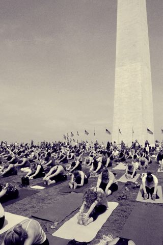 Bluebrain Yoga in DC