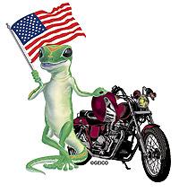 Biker_gecko_flag